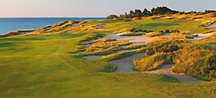Straits at Whistling Straits - Hole 16 Endless Bite