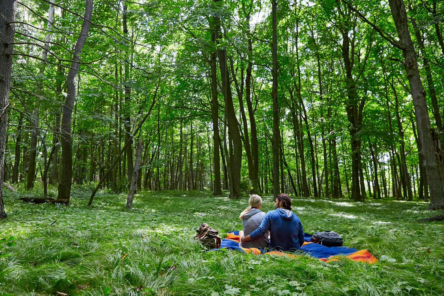 a couple on a blanket in the woods