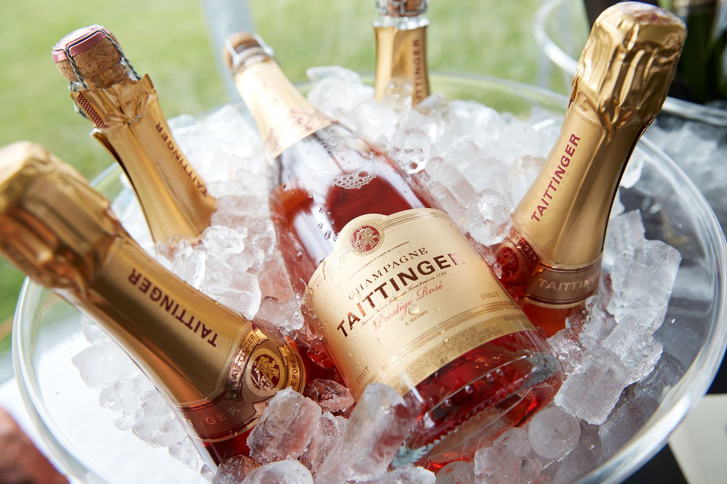 Bottles of champagne in ice
