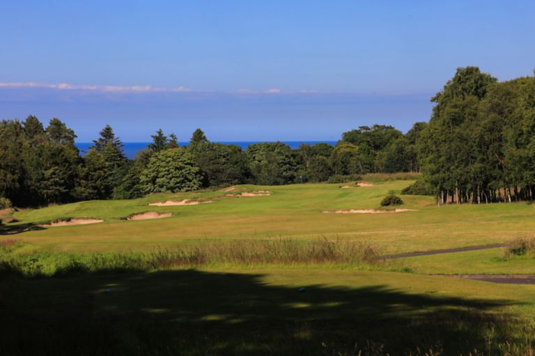 No. 14 Well. View from the right of The Duke's 14th hole over the rolling fairway.