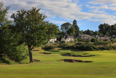No. 15 Steading. Looking uphill towards the 15th green at The Duke's golf course over multiple bunkers.