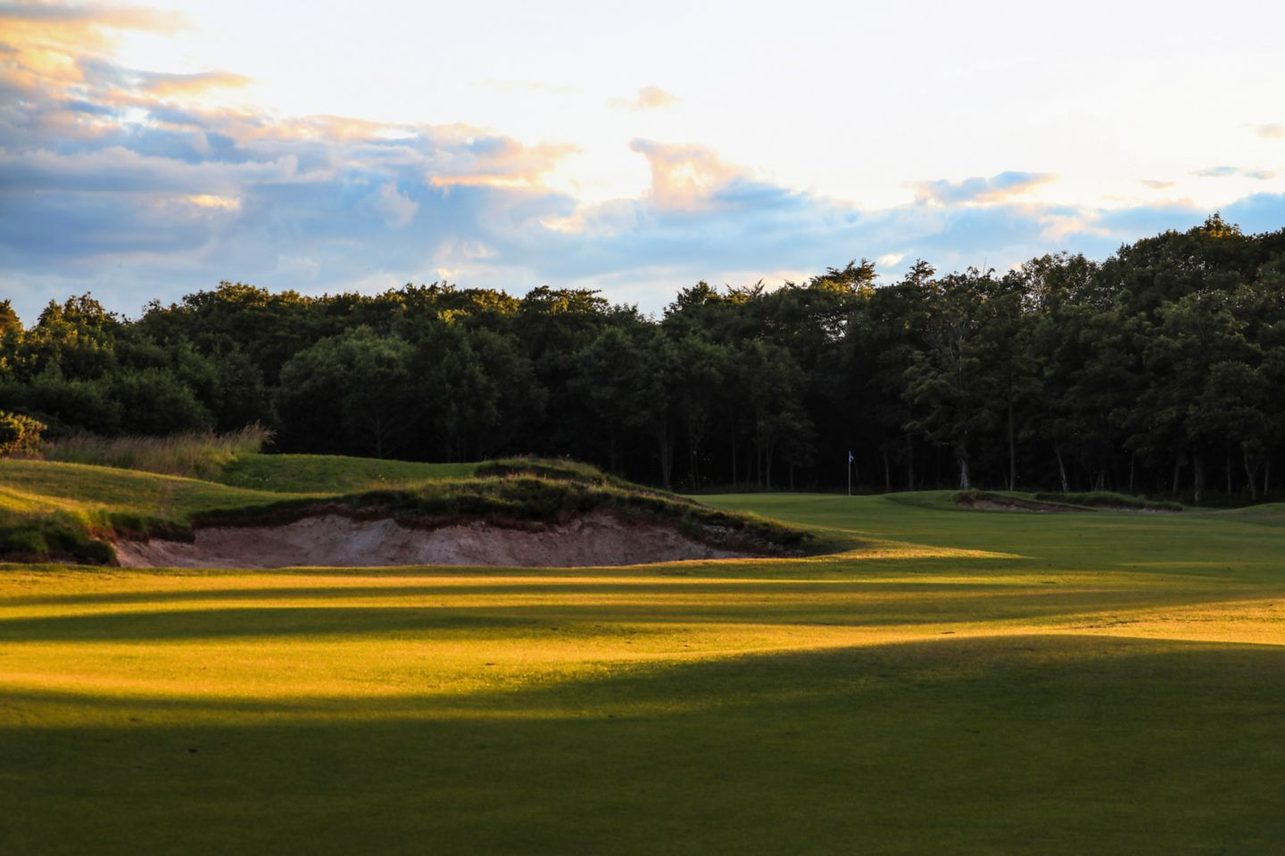 No. 5 Beeches. The Duke's 5th green from the fairway, golden from the sun.