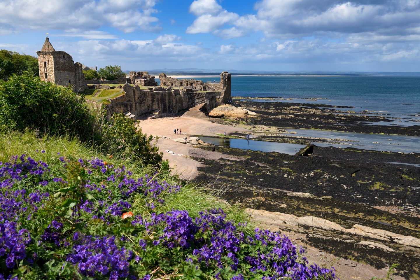 St Andrews Castle and beach on a sunny day