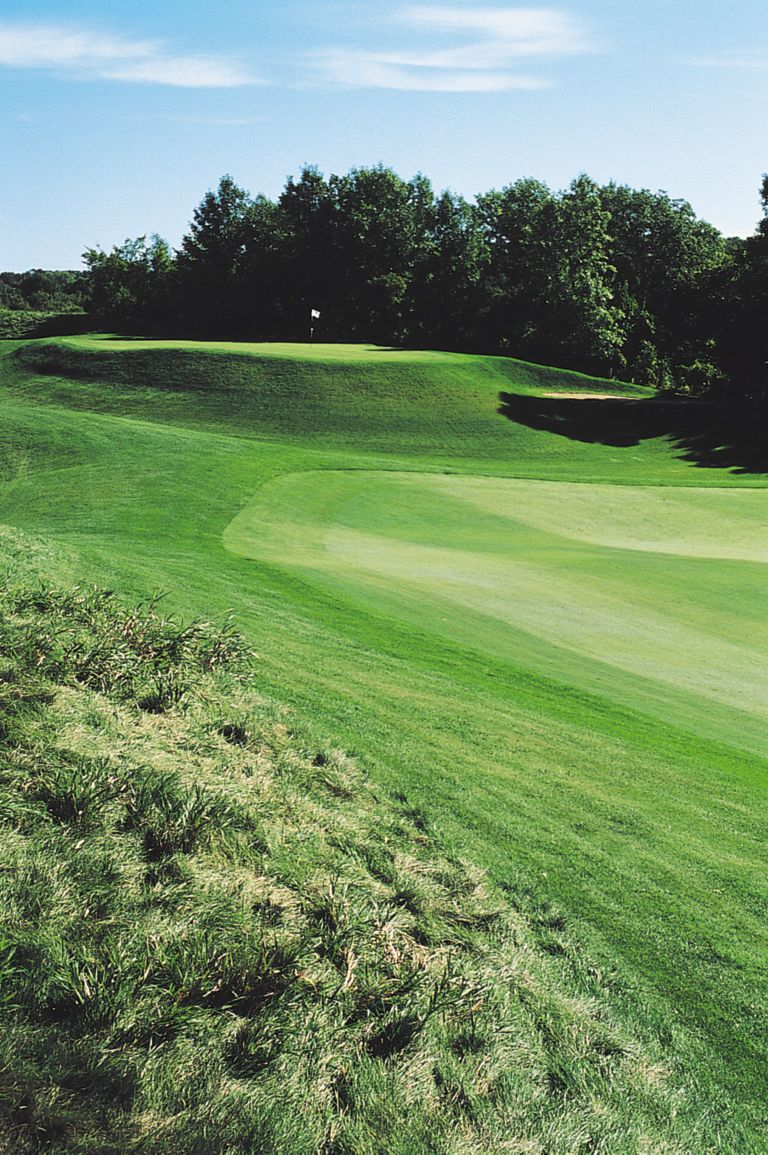 The green with elevated plateau on the Meadow Valleys course.