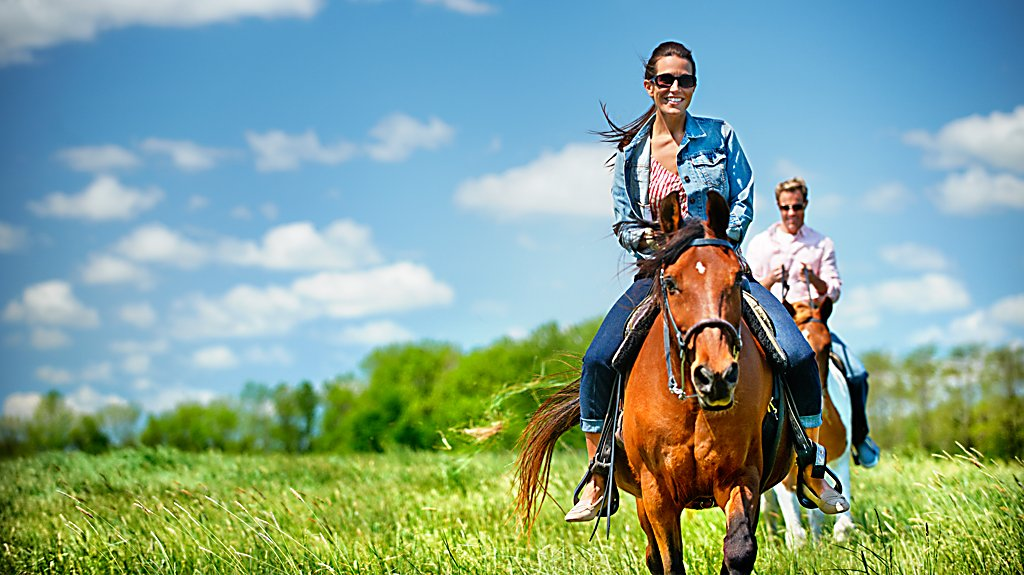 Horseback Riding at River Wildlife