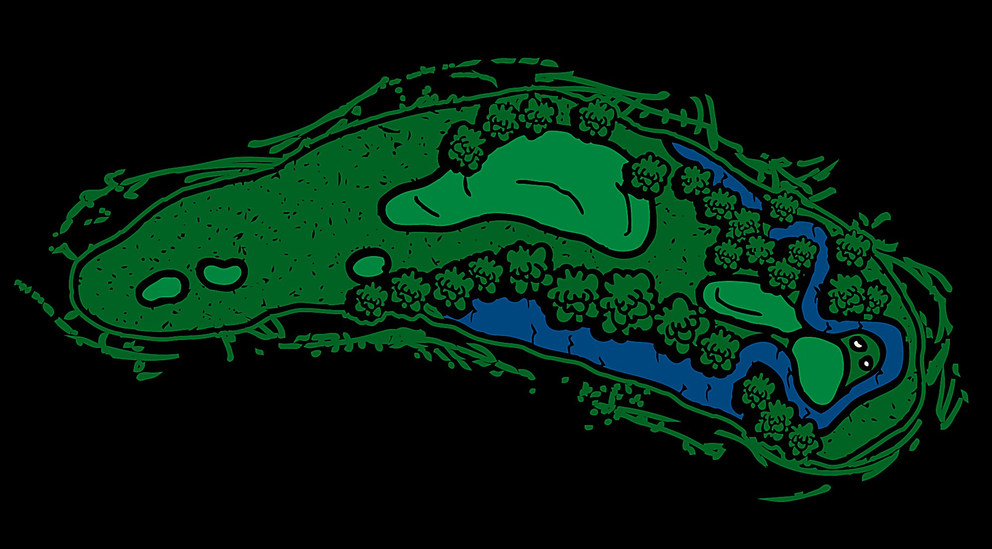 Meadow Valleys Hole 14 Nature's Course Layout