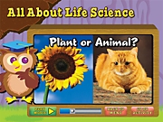 All About Life Science Interactive Activities