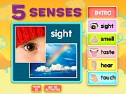 Five Senses Interactive Activities