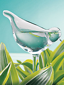 Bird Plant Waterer (set of 2)