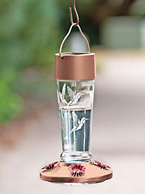 Solar Lighted Glass Hummingbird Feeder