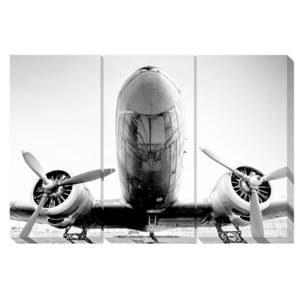 Plane Awesome Canvas Art, Set of Three