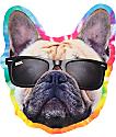 DGK Yogi Sticker