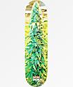 """DGK x High Times 8.25"""" Skateboard Deck"""