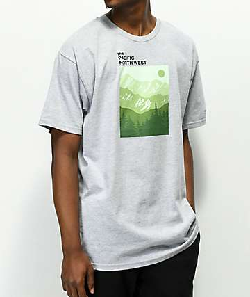 Casual Industrees PNW Mountain Layers Grey T-Shirt
