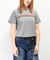 Dickies Vintage Rainbow Stripe Crop T-Shirt